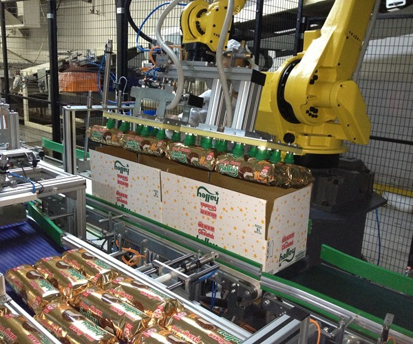 Robotic Packaging System